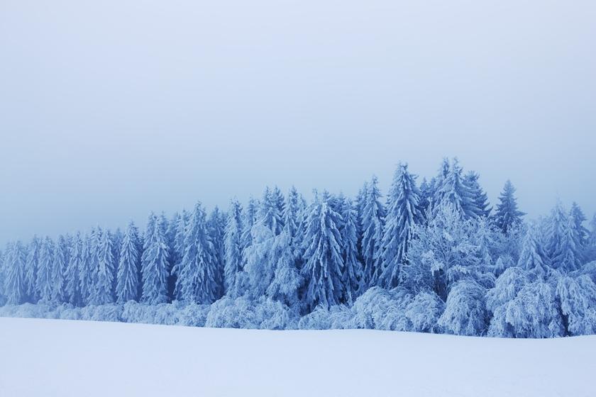 層雲峡のような大雪